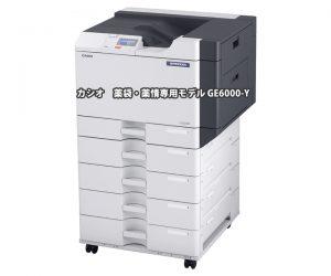 CASIO 薬袋・薬情専用モデル GE6000-Y